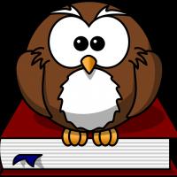 LIB – owl